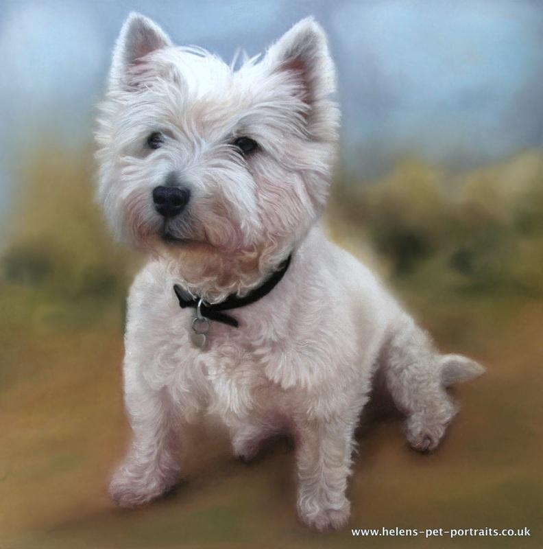 white dog sitting painting