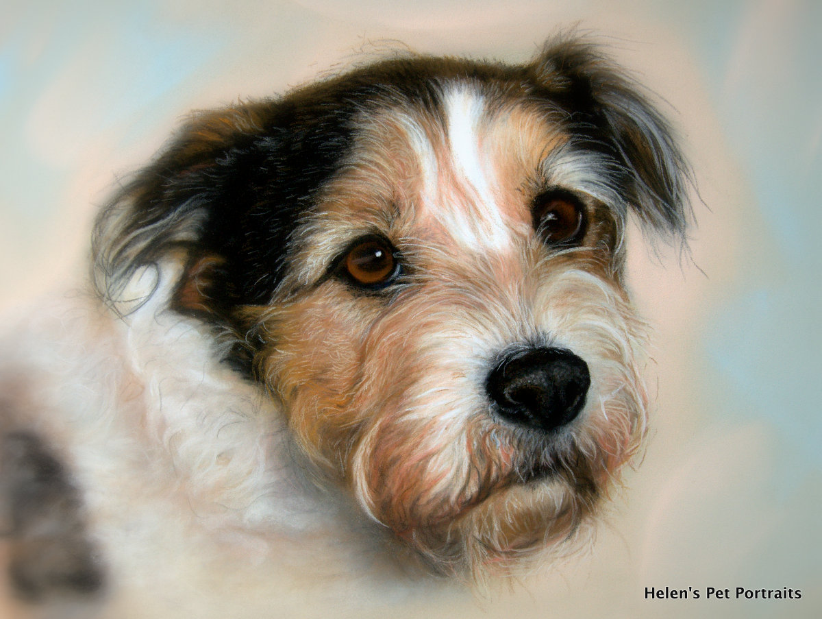 lifelike pet portraits from your own photograph.