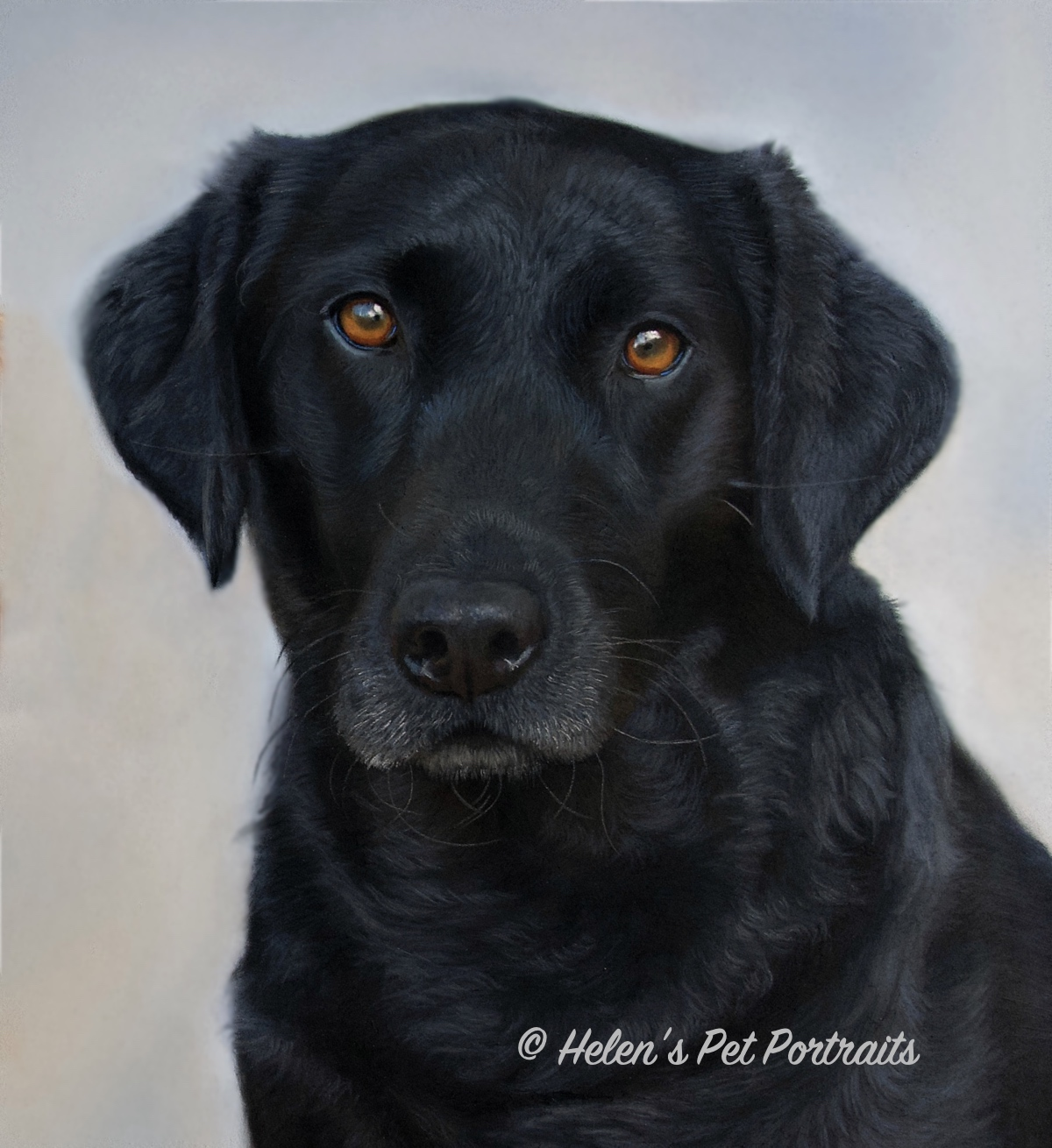 pastel painting of a black labrador part of a double dog picture