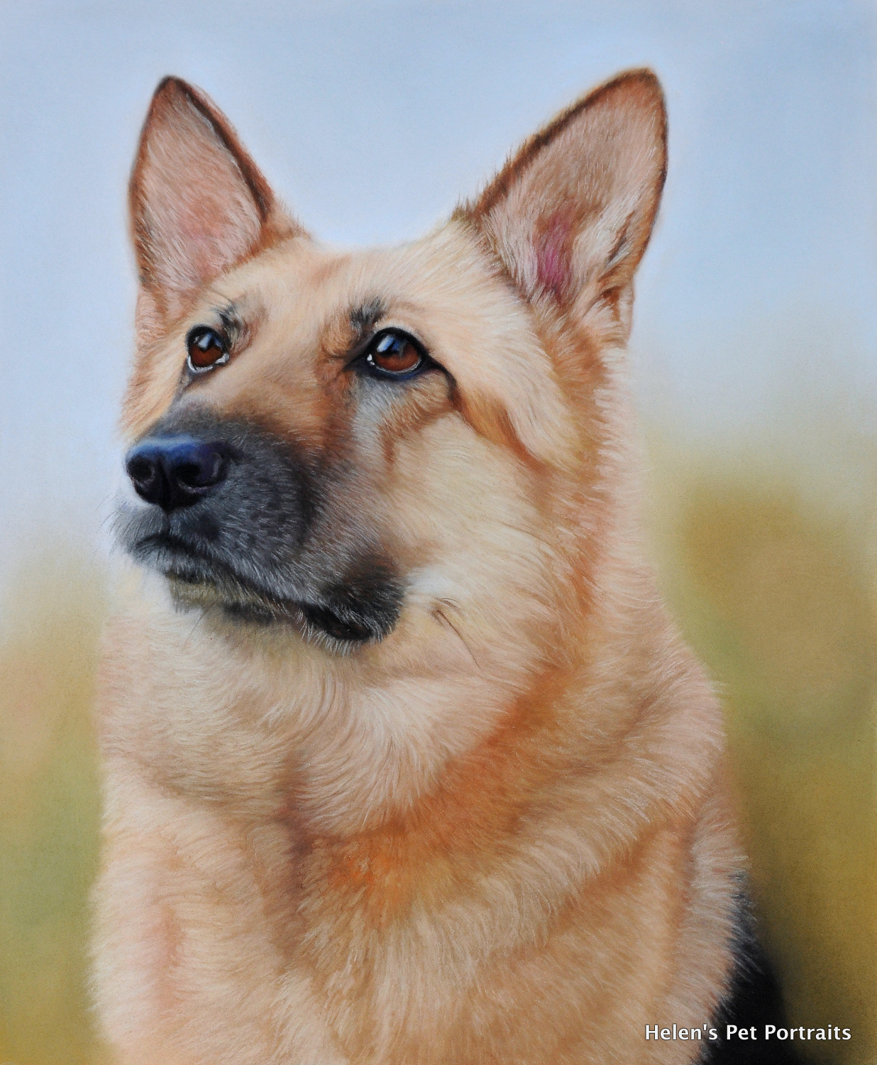 pastel painting of a german shepherd dog with ambient background