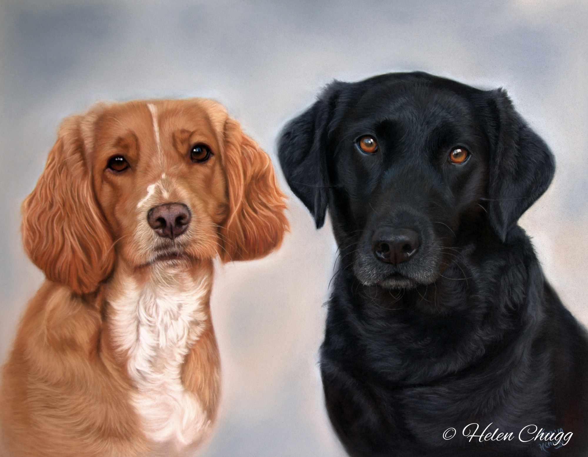 painting of a spaniel and black labrador dogs